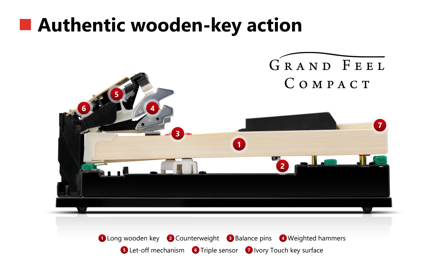 Grand Feel Compact wooden-key keyboard action for the Kawai CA49 and CA59 digital pianos